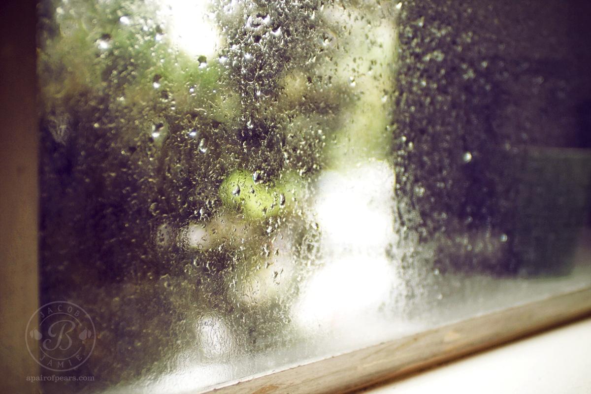 Endlich Regen auf den Garten der Casakorth