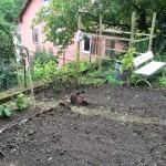 Der Garten  - Stand August 2014 - Tag 2 urbar machen.