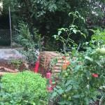 Der Garten  - Stand August 2015